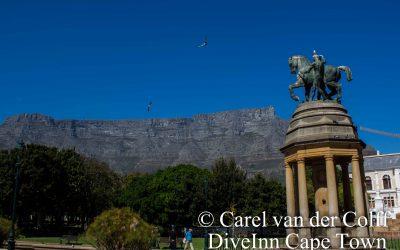 A Walk in The Company Gardens Cape Town